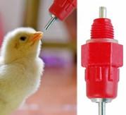 Ниппельные поилки 360° для птиц (кур,  перепелов,  цыплят,  бройлеров,  ин
